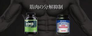 筋肉サプリの効果2