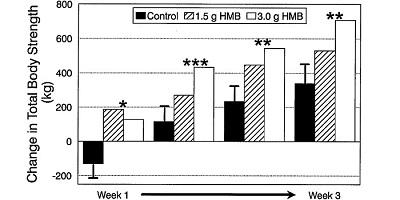 HMBの効果の大学実験1