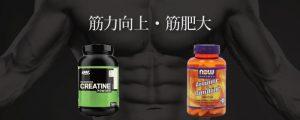 筋肉サプリの効果3